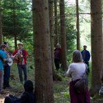 Waldlesung - Wanjo Banjo im tiefen Wald
